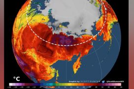 The Arctic is on fire and a record rise in temperatures has climate scientists worried